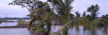 Neulich in Vietnam - Im Mekong Delta