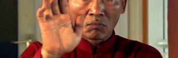Meister Nam Duong Hai und die Bedeutung des Lebens