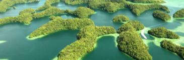 Palauinseln statuieren Exempel an vietnamesischen Fischerbooten